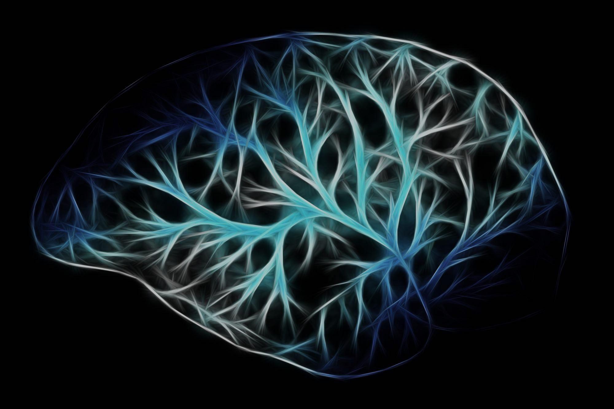The Neuroscience of Virtual Reality & Health